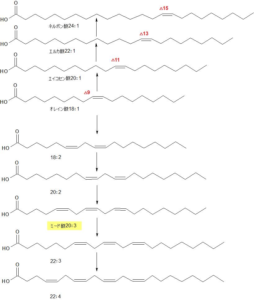 オレイン酸の変化