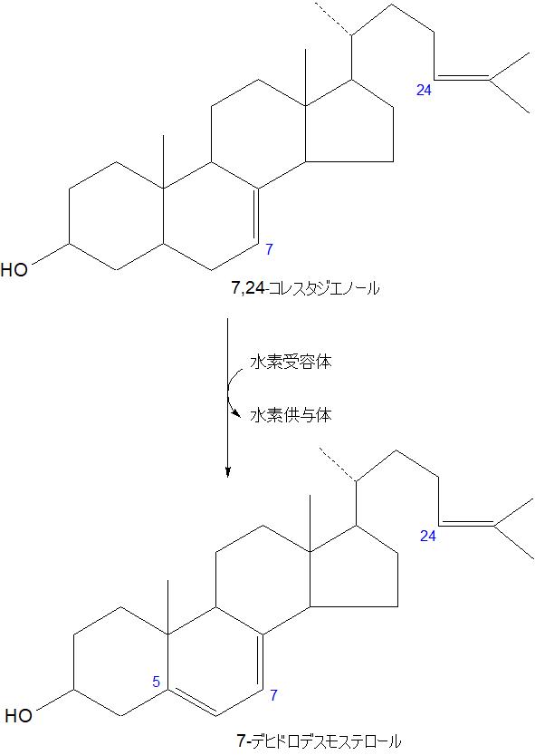 7-デヒドロデスモステロール