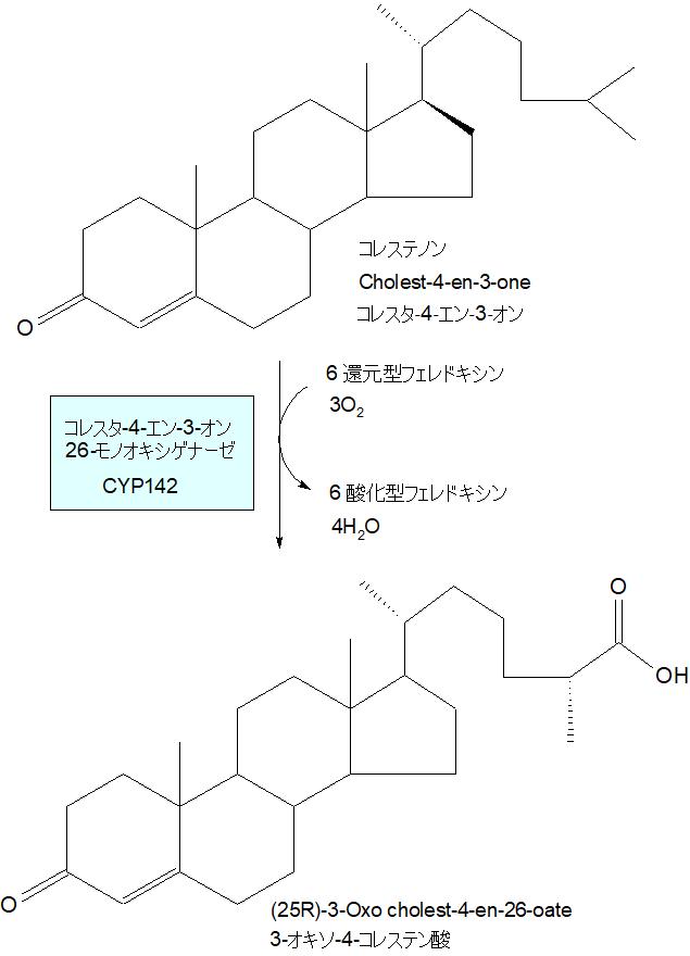 3-オキソ-4-コレステン酸
