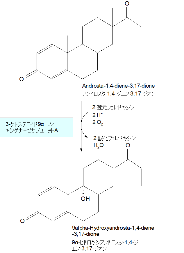 9α-ヒドロキシアンドロスタ-1,4-ジエン-3,17-ジオン