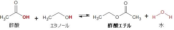 酢酸エチルの生成